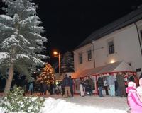 vánoční strom 2010 048