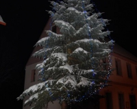 vánoční strom 2010 057
