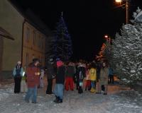 vánoční strom 2010 059