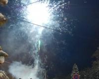 vánoční strom 2010 093