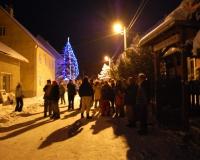 vánoční strom 2010 099